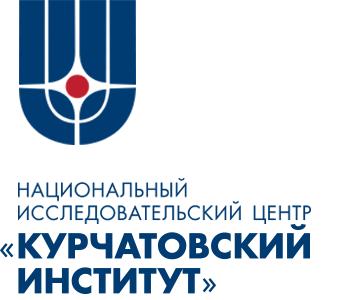 Курчатовский институт, НИЦ